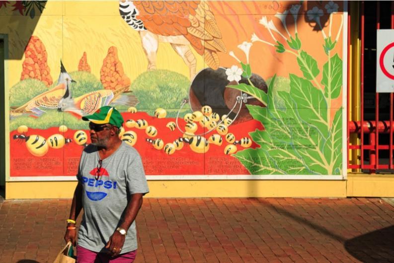 honeypot ant mural final