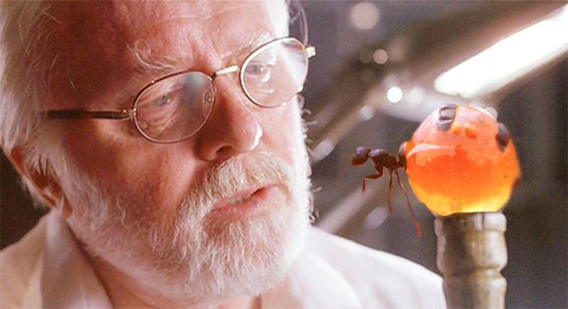 Jurassic Park cane as a honeypot ant